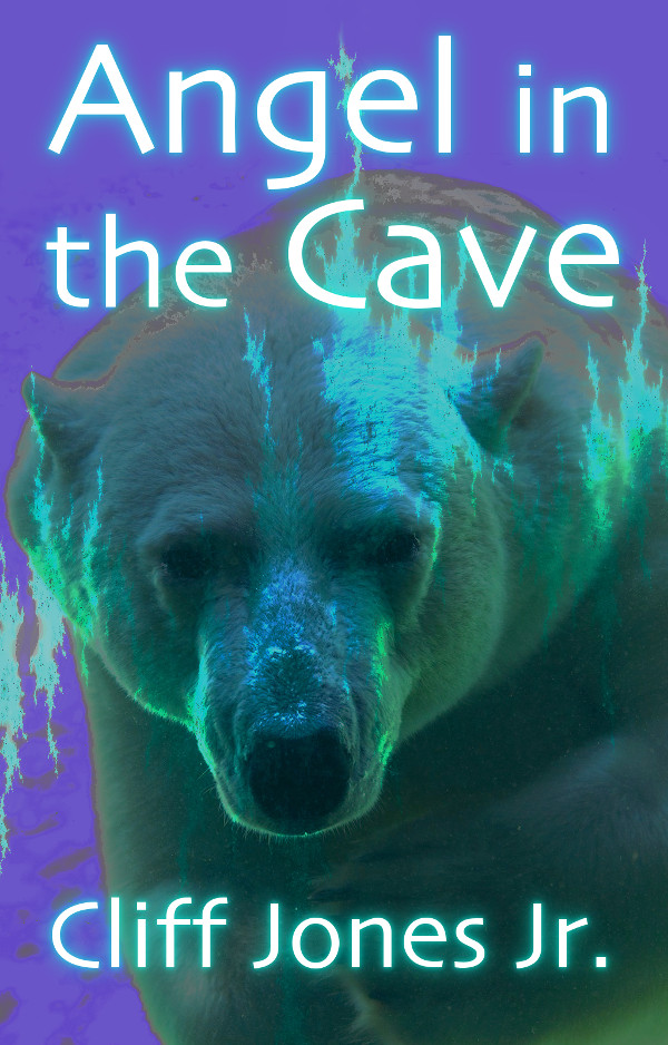 cover: 'Angel in the Cave'